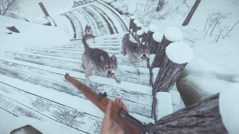 gamescom_-_kona_-_screenshot_4_wolves